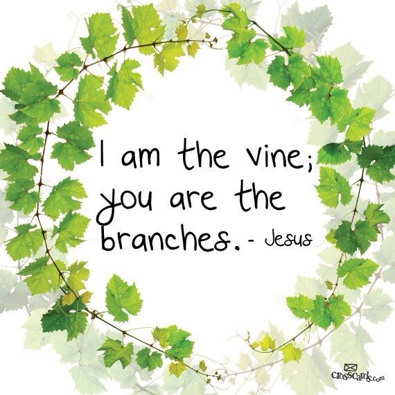 Empowering Thought for Today:  Get Closer to The Vine and  The Vinedresser
