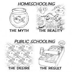 Homeschooling Year Round: The Decision